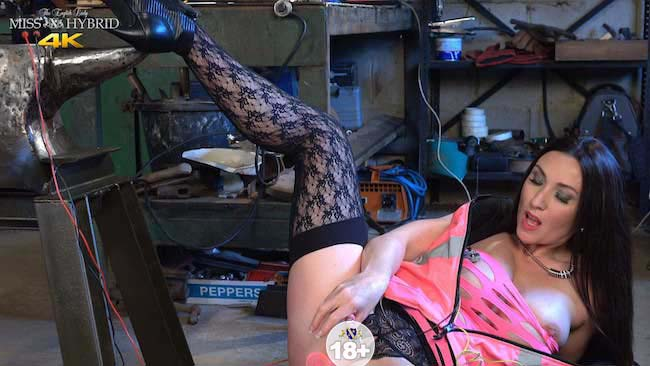 Miss Hybrid nipple clamps and tools, open crotch panties and stockings.
